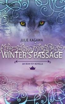 Picture of a book: Winter's Passage