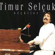 Picture of a band or musician: Timur Selçuk