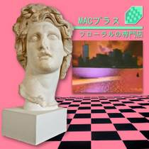 Picture of a band or musician: Macintosh Plus