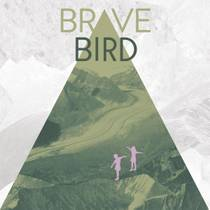 Picture of a band or musician: Brave Bird