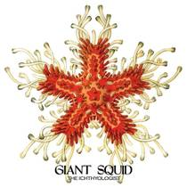 Picture of a band or musician: Giant Squid