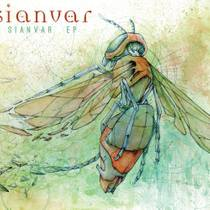 Picture of a band or musician: Sianvar