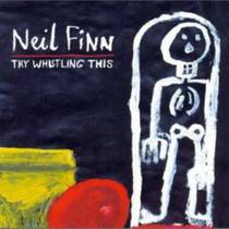 Picture of a band or musician: Neil Finn