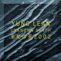 Picture of a band or musician: Yung Lean