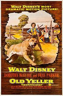 Picture of a movie: Old Yeller