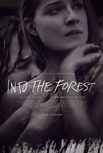 Picture of a movie: Into The Forest