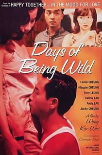 Picture of a movie: Days Of Being Wild