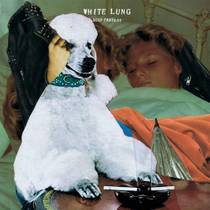 Picture of a band or musician: White Lung