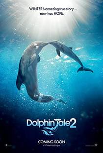 Picture of a movie: Dolphin Tale 2