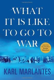 Picture of a book: What It is Like to Go to War