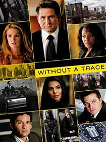 Picture of a TV show: Without A Trace