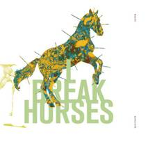 Picture of a band or musician: I Break Horses