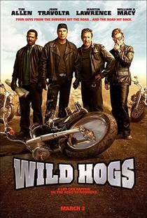 Picture of a movie: Wild Hogs