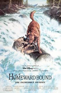 Picture of a movie: Homeward Bound: The Incredible Journey