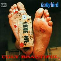 Picture of a band or musician: Babybird