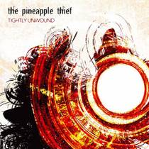 Picture of a band or musician: The Pineapple Thief