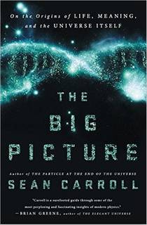 Picture of a book: The Big Picture: On The Origins Of Life, Meaning, And The Universe Itself