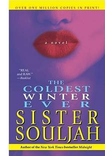 Picture of a book: The Coldest Winter Ever