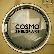 Picture of a band or musician: Cosmo Sheldrake