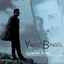 Picture of a band or musician: Yavuz Bingöl