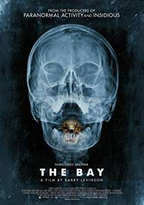 Picture of a movie: The Bay