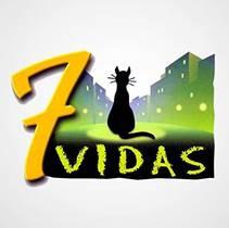 Picture of a TV show: 7 Vidas