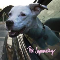 Picture of a band or musician: Pet Symmetry