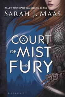 Picture of a book: A Court Of Mist And Fury