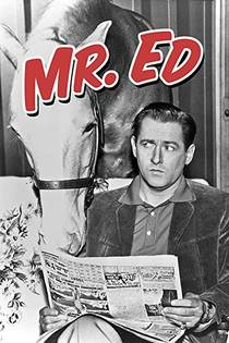 Picture of a TV show: Mister Ed
