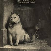 Picture of a band or musician: Pavlov's Dog