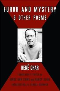 Picture of a book: Furor & Mystery and Other Poems