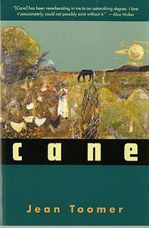 Picture of a book: Cane