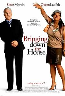 Picture of a movie: Bringing Down The House