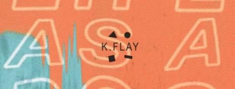 Image of K.Flay