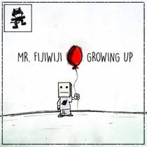 Picture of a band or musician: Mr Fijiwiji