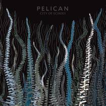 Picture of a band or musician: Pelican