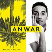 Picture of a band or musician: Anwar