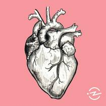 Picture of a podcast: The Heart