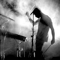 Picture of a band or musician: Дельфин