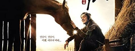 Image of Horse Doctor