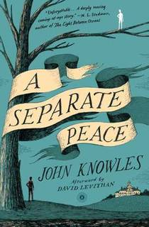 Picture of a book: A Separate Peace