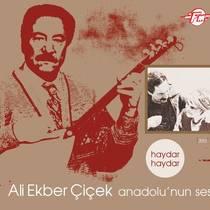 Picture of a band or musician: Ali Ekber Çiçek