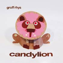 Picture of a band or musician: Gruff Rhys