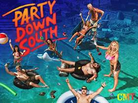 Picture of a TV show: Party Down South