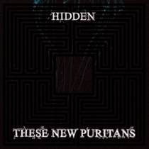 Picture of a band or musician: These New Puritans
