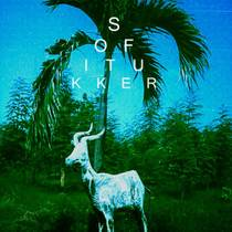 Picture of a band or musician: Sofi Tukker