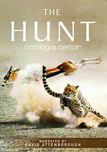 Picture of a TV show: The Hunt