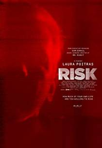Picture of a movie: Risk