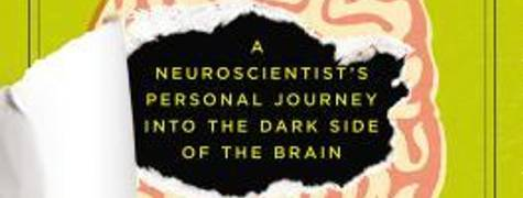 Image of The Psychopath Inside: A Neuroscientist's Personal Journey Into The Dark Side Of The Brain