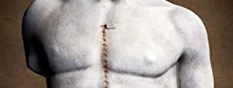 Image of Taxidermia